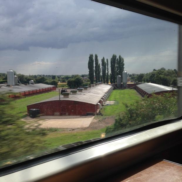 no train rain?